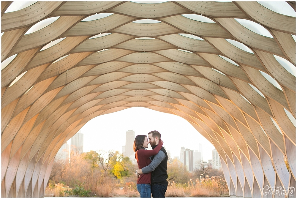 Lincoln-Park-Engagement-Session_0010.jpg
