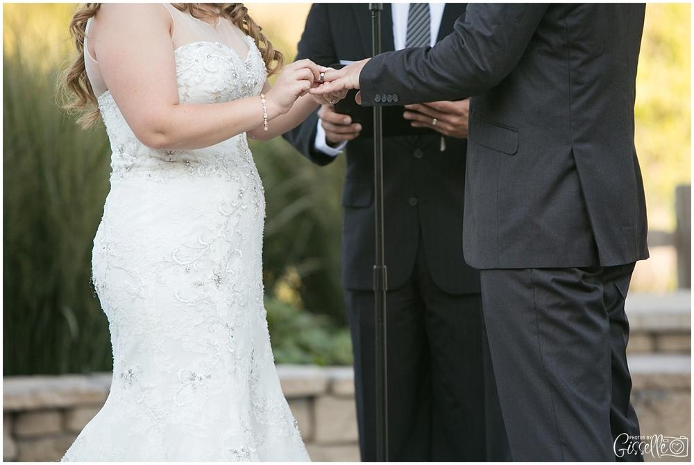Schaumburg-wedding-photographer_0030.jpg