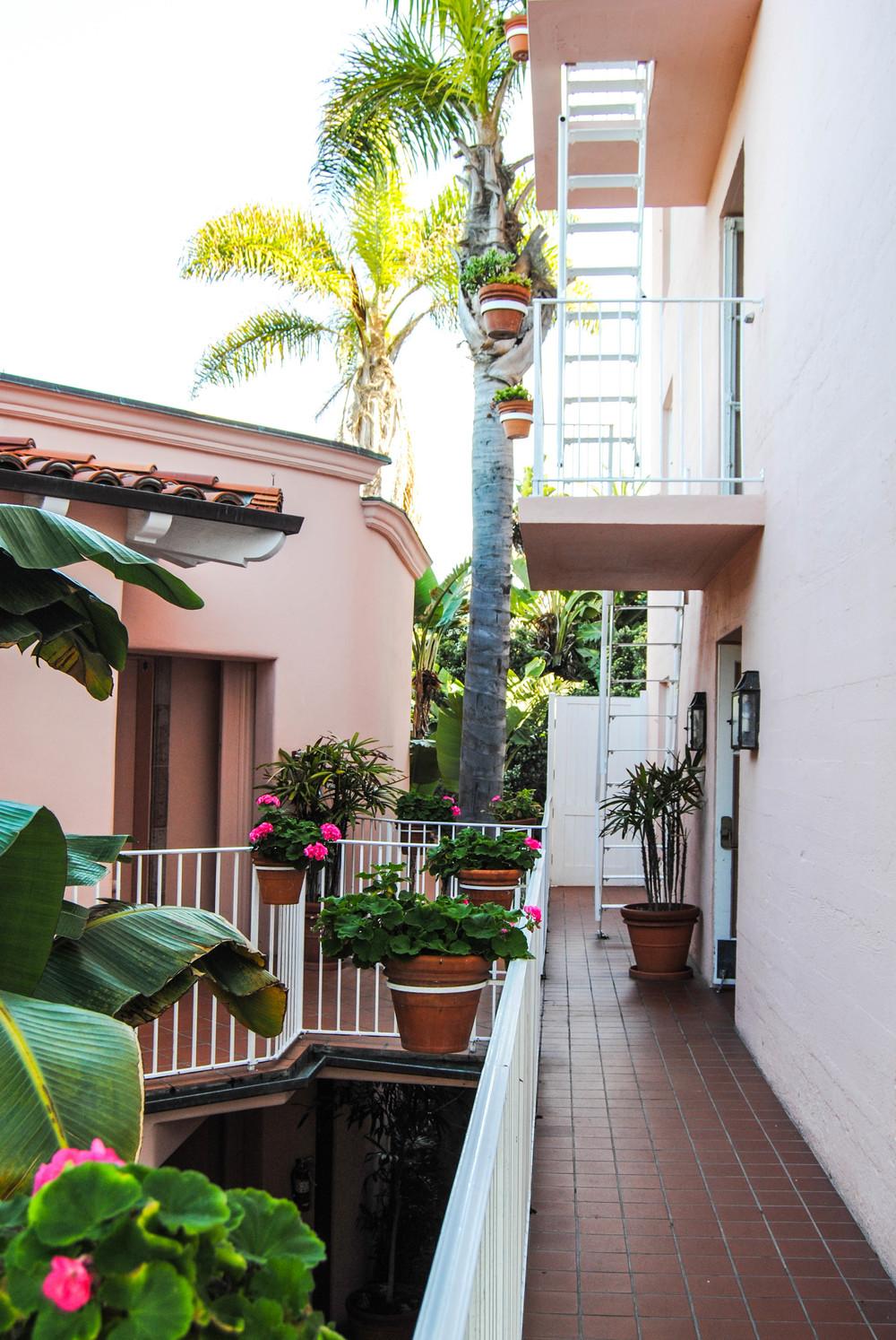 pink-flowers-la-valencia-hotel-san-deigo