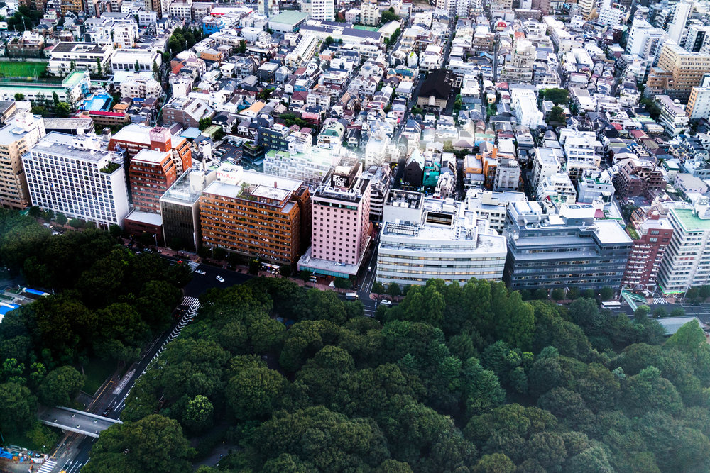 Elise_Gabriel_Travel_Blogger_Tokyo_Shinjuku