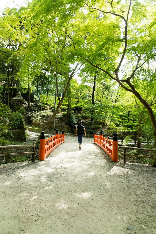 Kyoto_Japan_Fushimi_Inari_Taisha