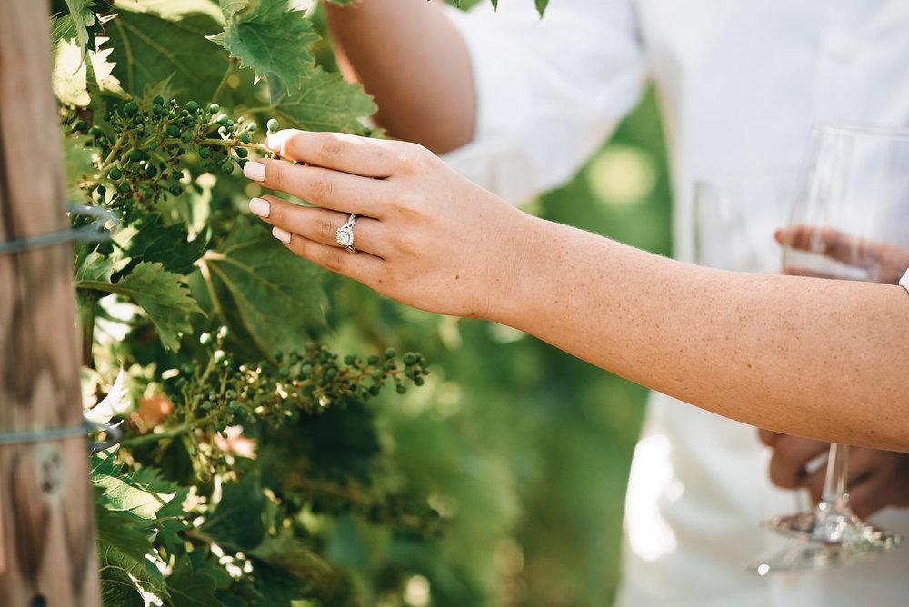 Katie-Chris-Engagement-Session-Beneduce-Vineyard-Justin-Heyes-Photography_12.jpg