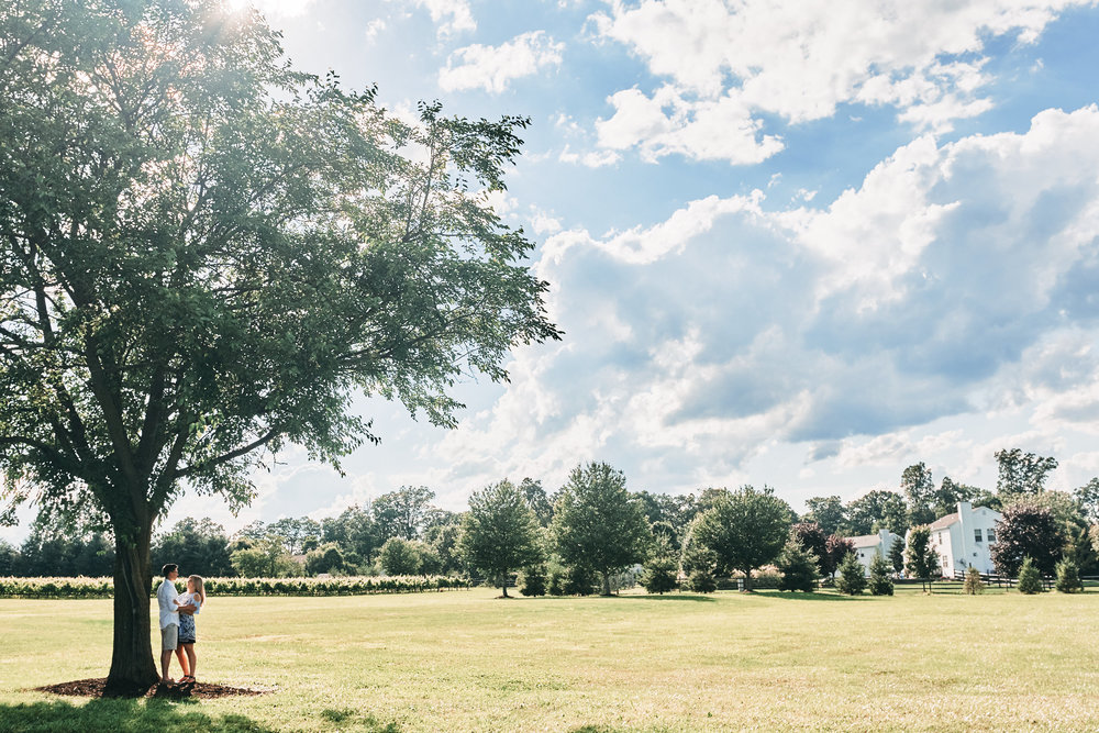 Katie-Chris-Engagement-Session-Beneduce-Vineyard-Justin-Heyes-Photography_24.jpg