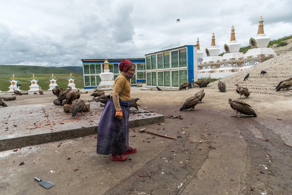 Tibetan sky funeral remains