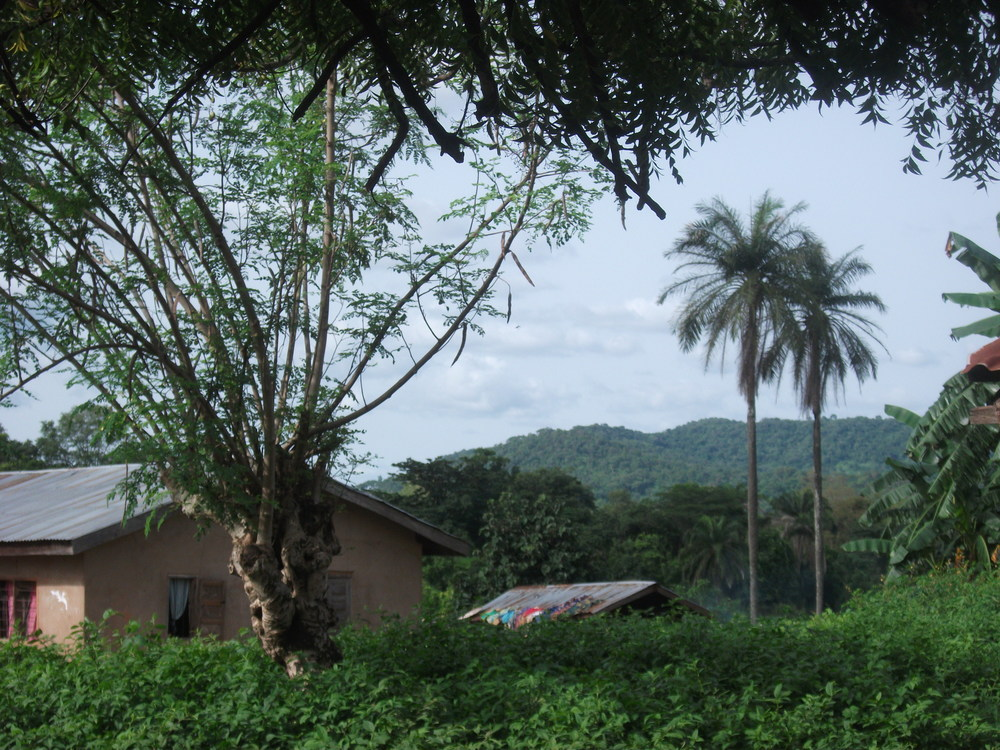 Nigeria 2010-203.JPG