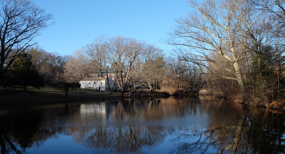 pond shot.jpg