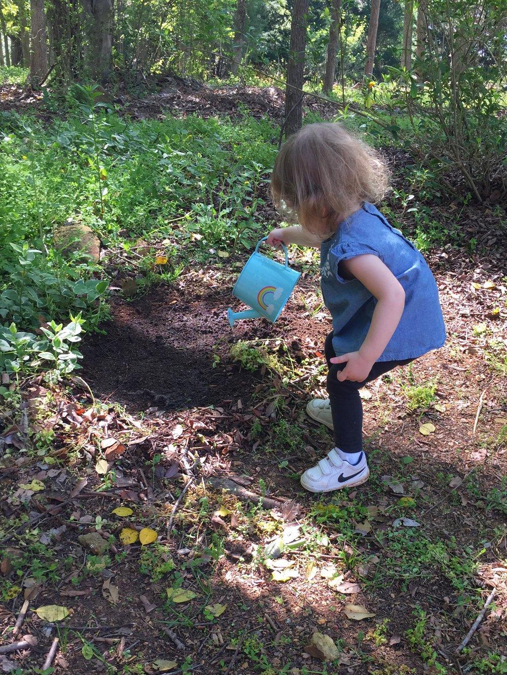 bringbackthebees-cheerios-watering-seeds