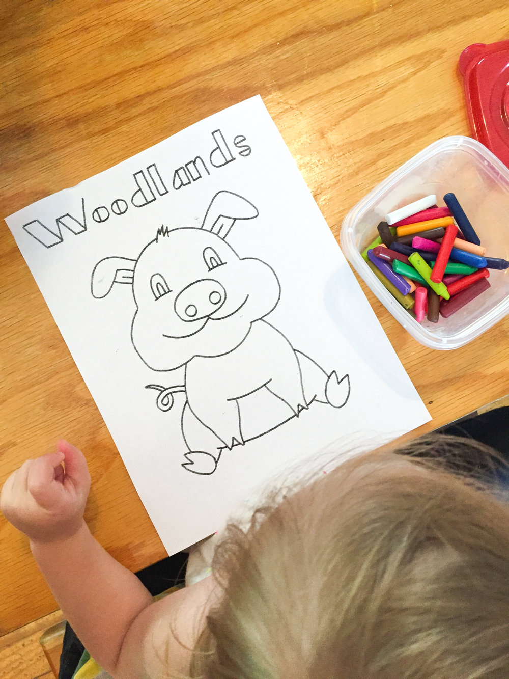 Kid's Coloring Sheet