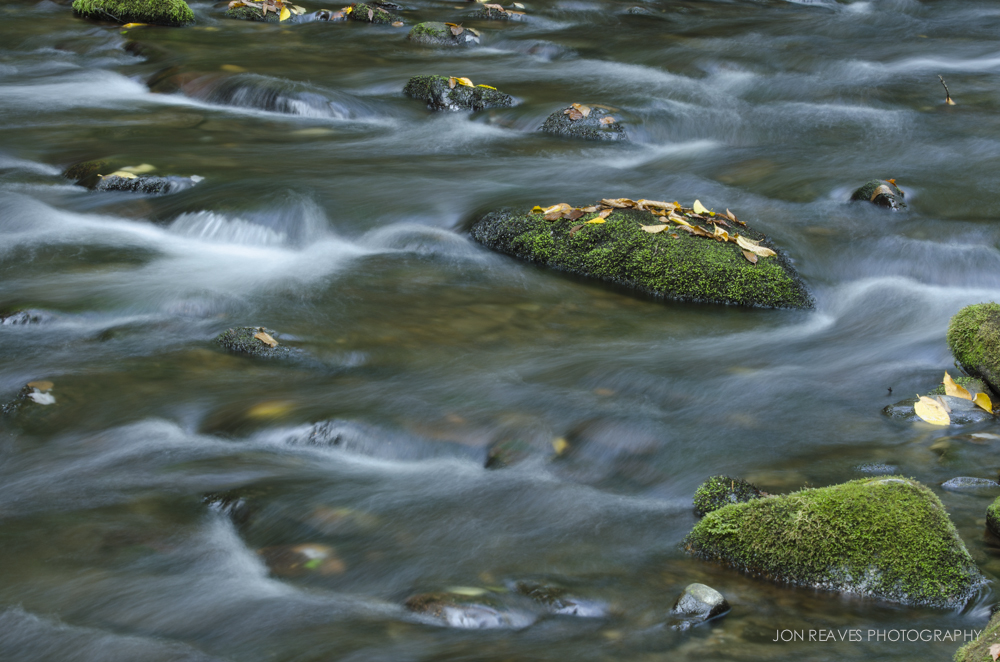 Moss Covered Stones in a Creek in the Great Smoky Mountains.