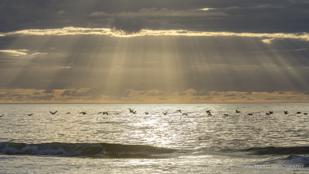 Pelicans Flying over the Atlantic through God Beams, Sunset Beach, North Carolina