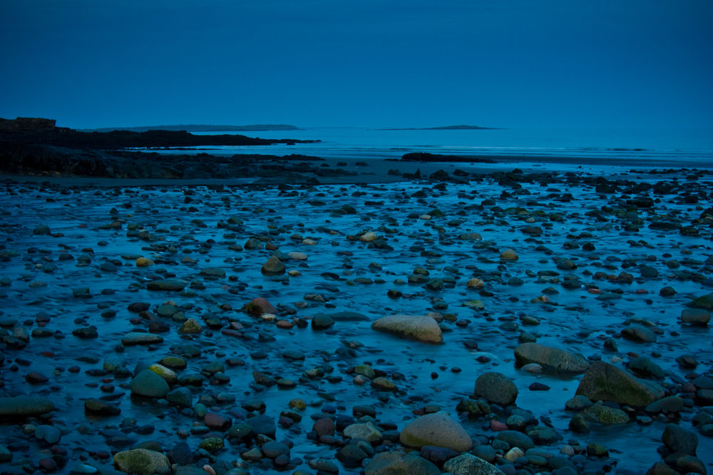 Seal Cove Beach during low tide at twilight