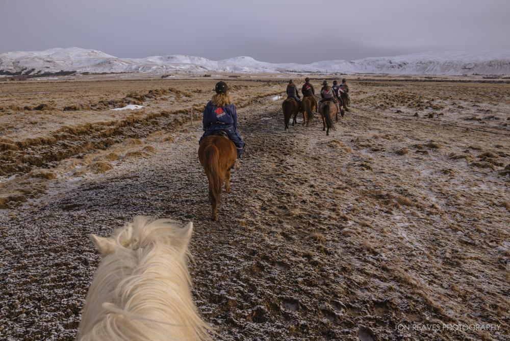 Riding Icelandic horses in Hveragerði