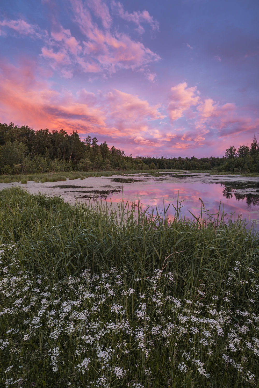 Sunset in Elk Island National Park, Alberta, Canada