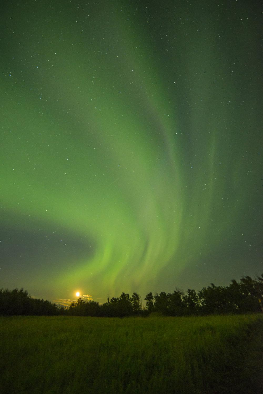 Northern Lights (aurora borealis), Elk Island National Park
