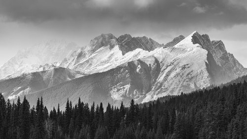 Black white nature jon reaves kootenay national park british columbianbsp roaring creek on black and white film voltagebd Image collections