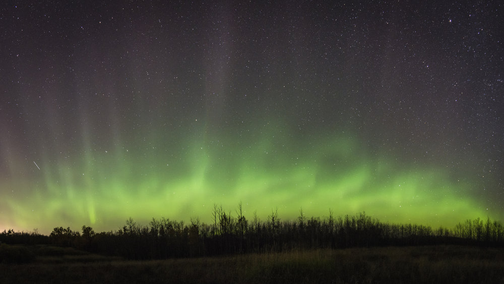 Aurora Borealis, near Edmonton, Alberta
