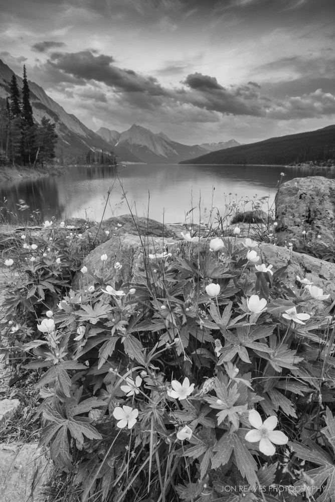 Spring on Medicine Lake, Jasper National Park