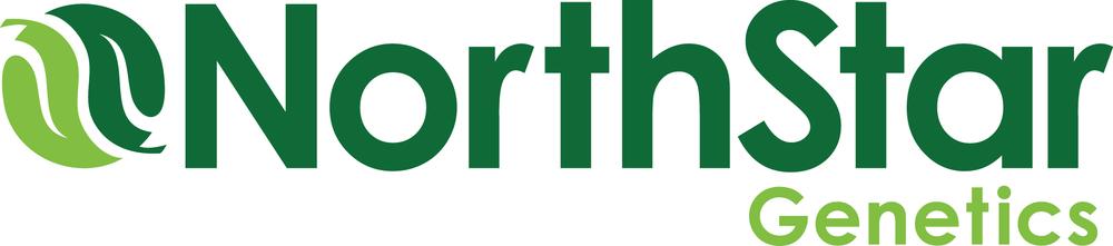 NorthStar_Logo_3C_RGB_2014.jpg