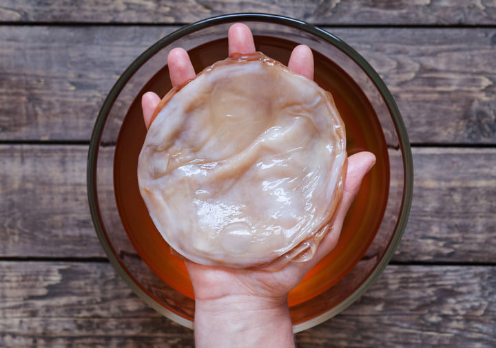 Don't fear the SCOBY!  What's a SCOBY? Sign up for  my class  to find out!