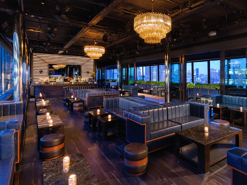 PH-D Rooftop Lounge - 355 W 16th St, New York, NY 10011