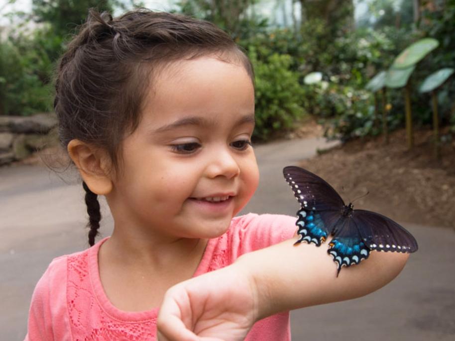 Bronx Zoo - 2300 Southern Blvd, Bronx, NY 10460