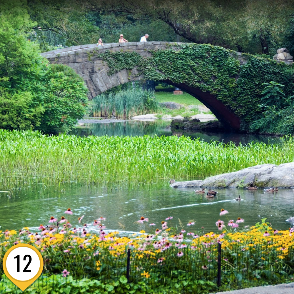 мост_из_один_дома_2_маршрут1_ньюйорк_ньюйоркгид.jpg