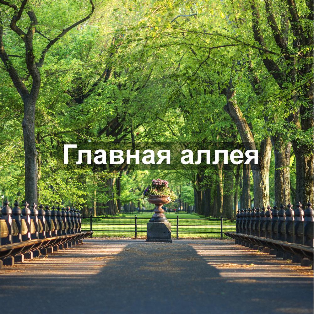 Главная_аллея_кинолокации_Ньюйоркгид_Иван_Федин.jpg