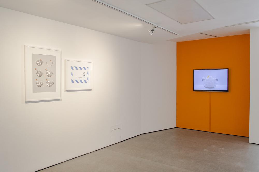 Amelia Crouch Exhibition-15.jpg