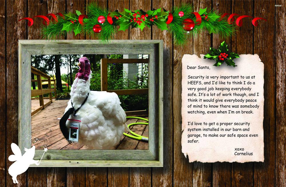 cornelius turkey secret santa virtual gift holiday fundraiser
