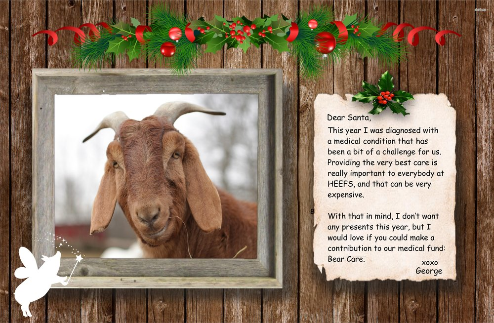 george the goat secret santa virtual gift holiday fundraiser