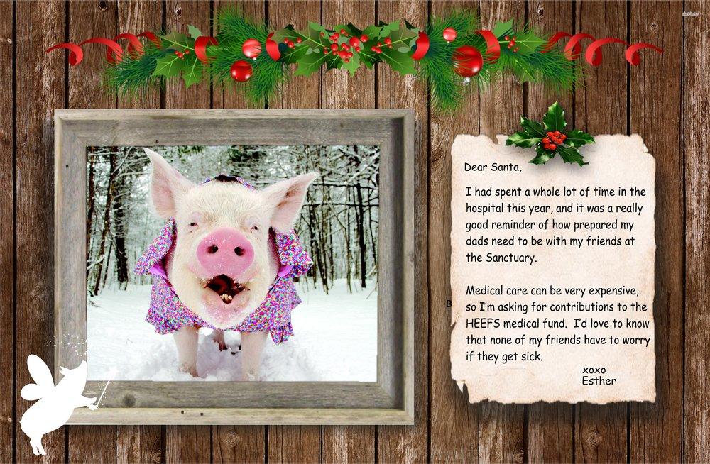esther the wonder pig secret santa virtual gift holiday fundraiser