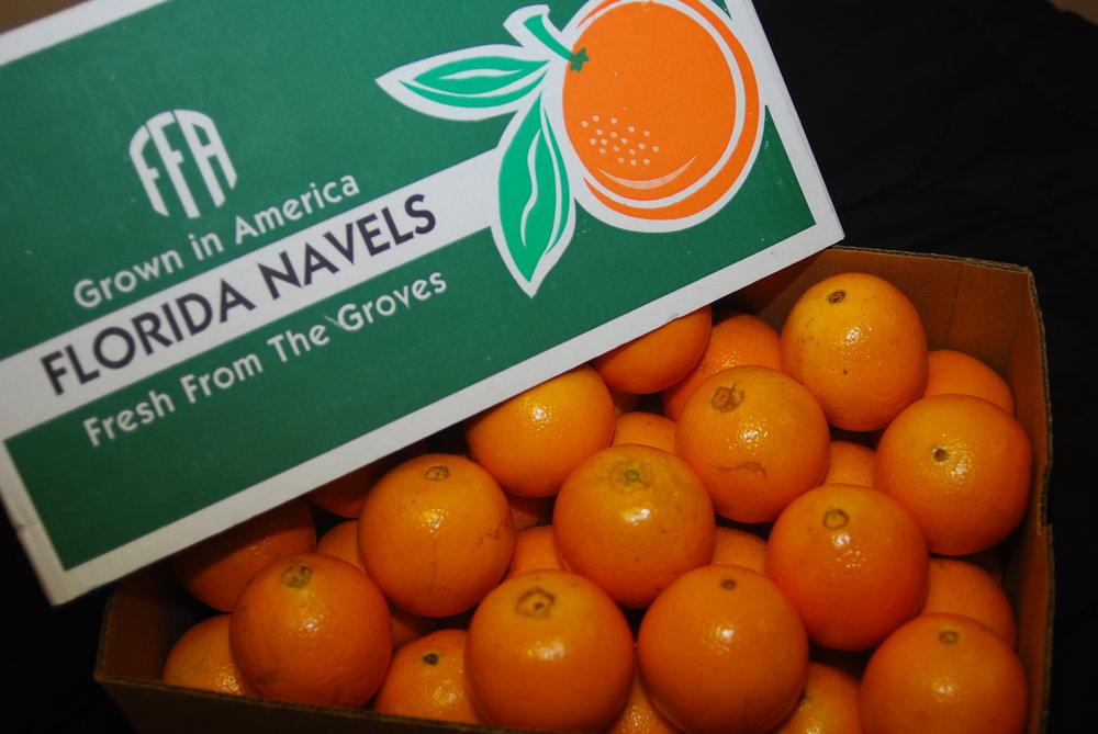 Fruit phtos 010.jpg
