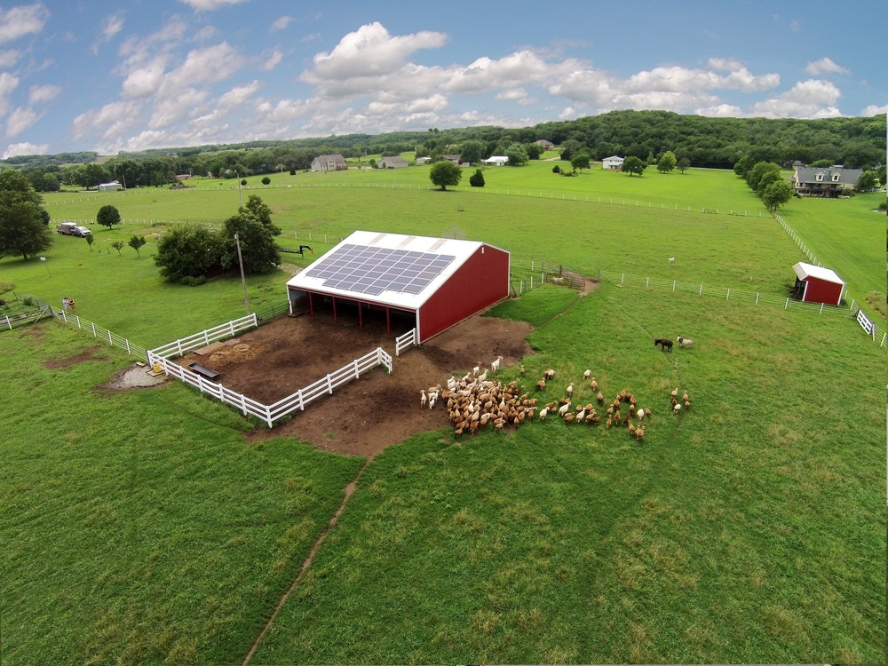 Solar array on an open-sided sheep barn © 2015 Cromwell Environmental