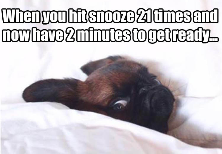 hitting-the-snooze-button.jpg