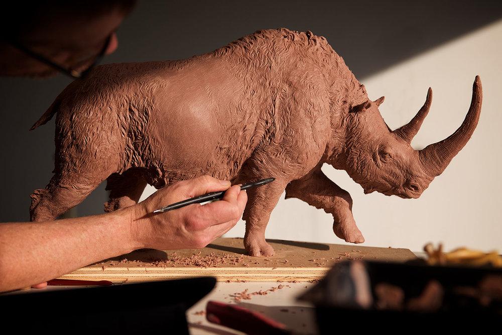 rhinoclay.jpg