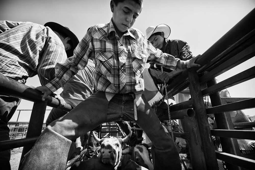 A young Native American cowboy prepares to ride a steer at Crow Agency's annual powwow and rodeo. Young rodeo participants use steers at an early age in preparation for riding prized bulls in the future.