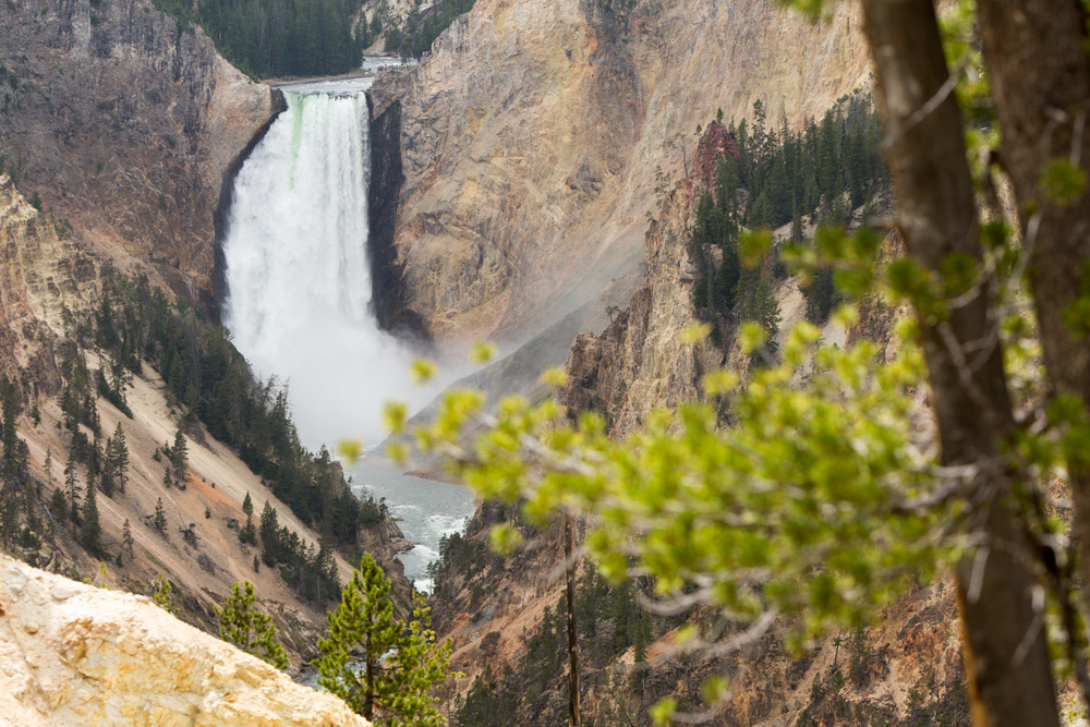 20150702_National_Geographic_Yellowstone_0977.jpg