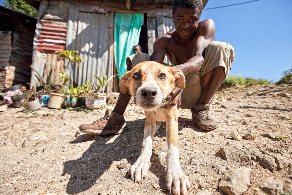 The homes throughout the village are getting larger and families are able to take in pets; animals that usually would remain as strays in the past.