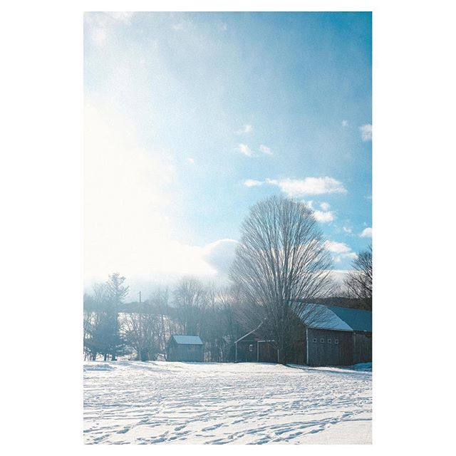 Bright barn ❄🌞#vermontlife