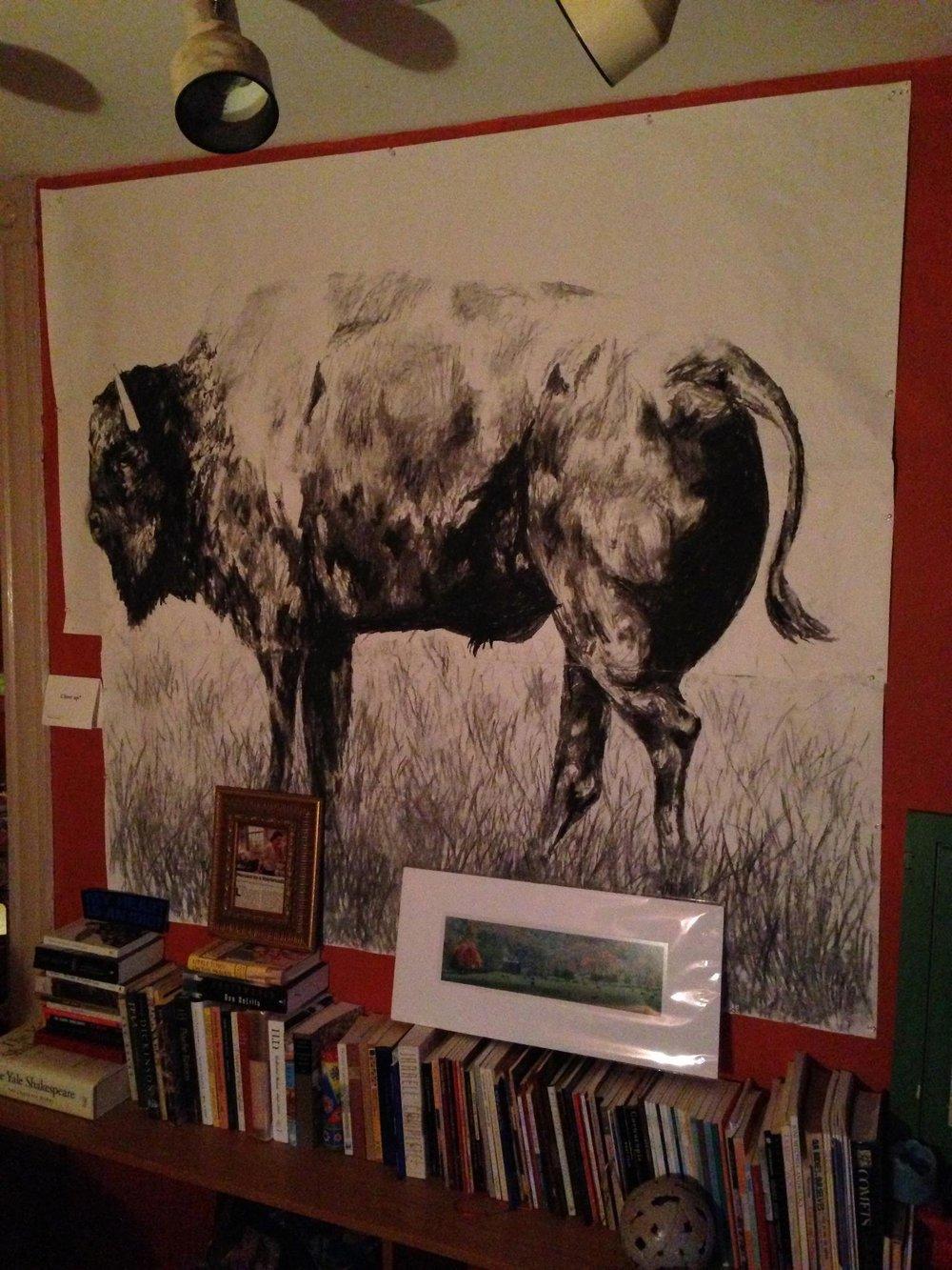 buffalo - charcoal