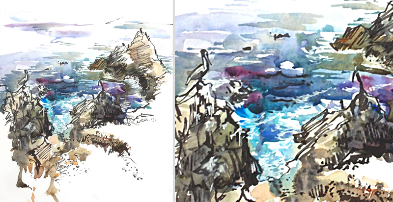 POINT LOBOS,   California, watercolor,  pen & ink