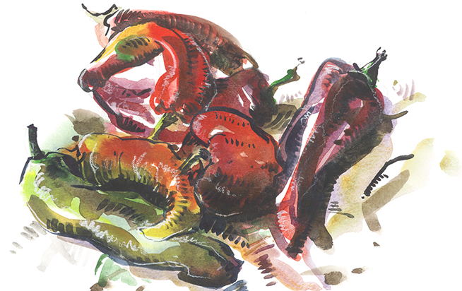 CHILIS,  watercolor, brush pen
