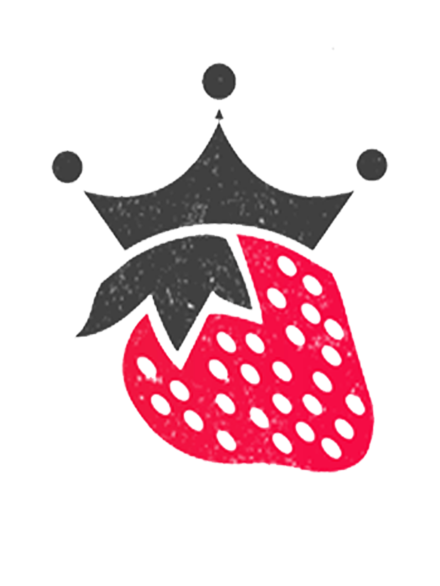 Queen & Berry | Web Design and Branding Experts | Chicago, IL