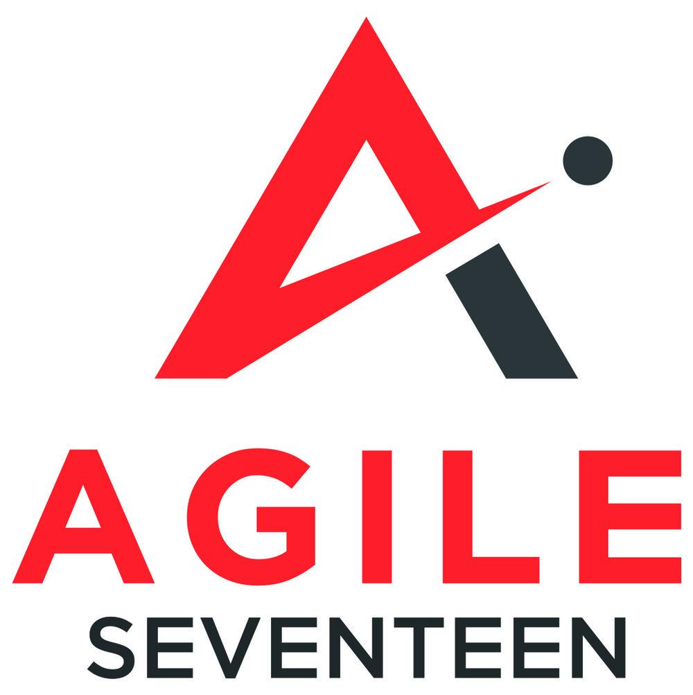 Agile17_File