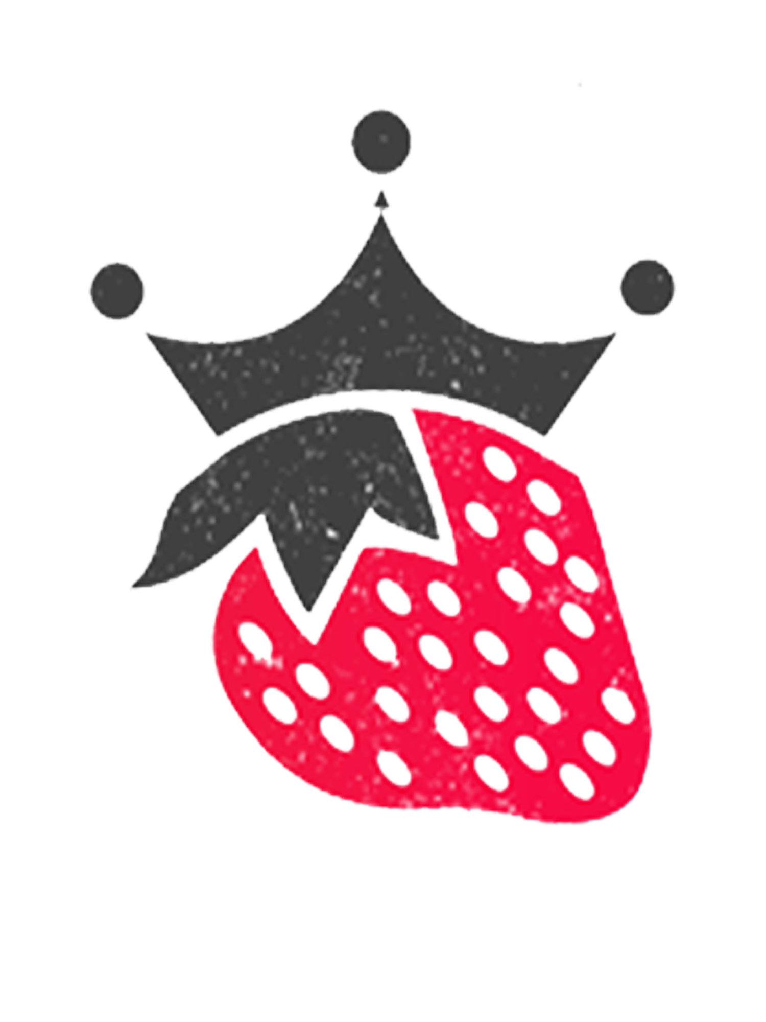 Queen & Berry  + Squarespace Design | Branding Experts | Chicago, IL