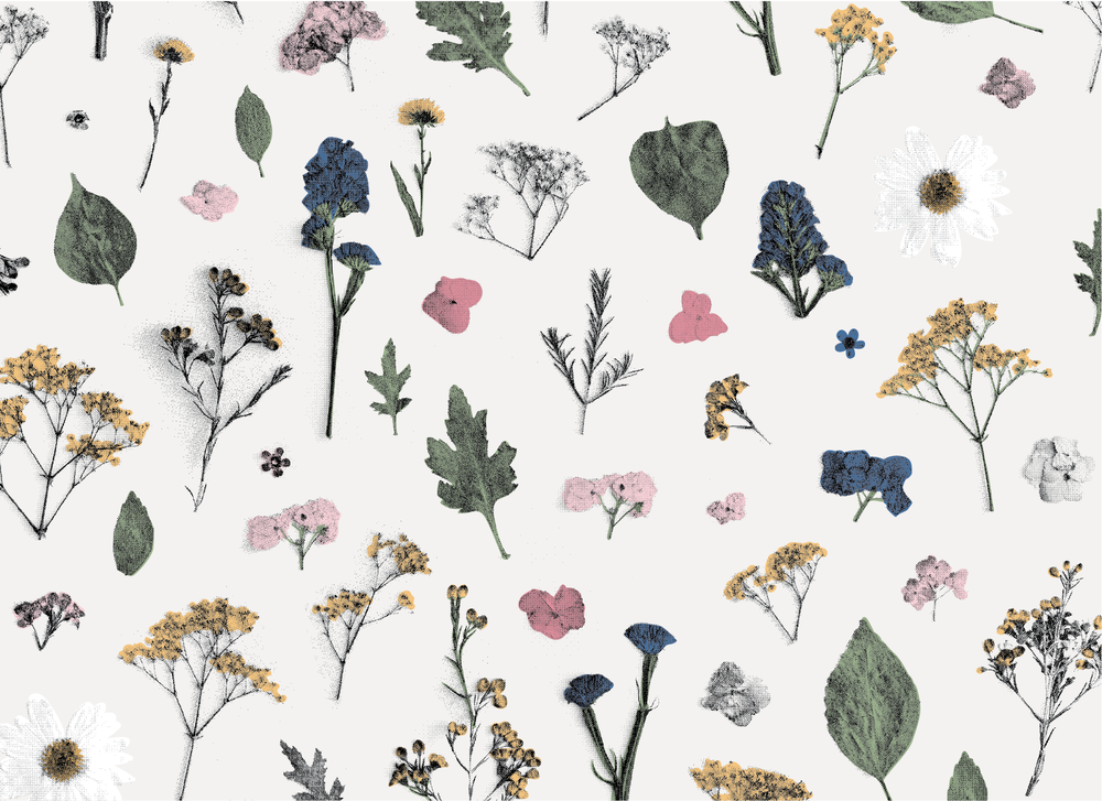 Images of the pressed florals were photo-manipulated to create this seamless pattern.