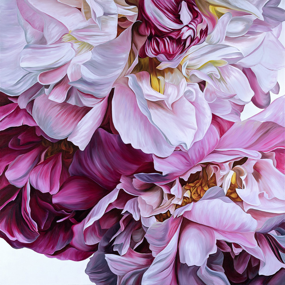 ISALA  Peonies  40x40 INCHES  SOLD