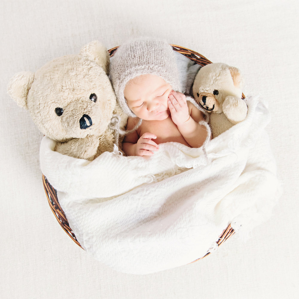 Sleeping Baby with Teddy Bears in a Basket | Cassie Schott Photography