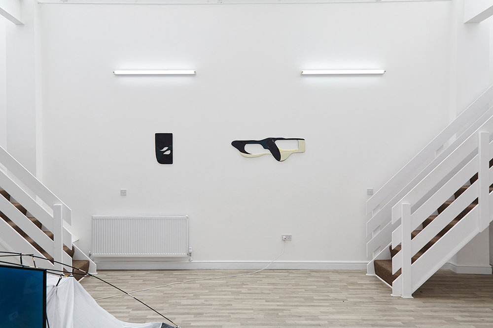 Adult World, Installation View, 2017