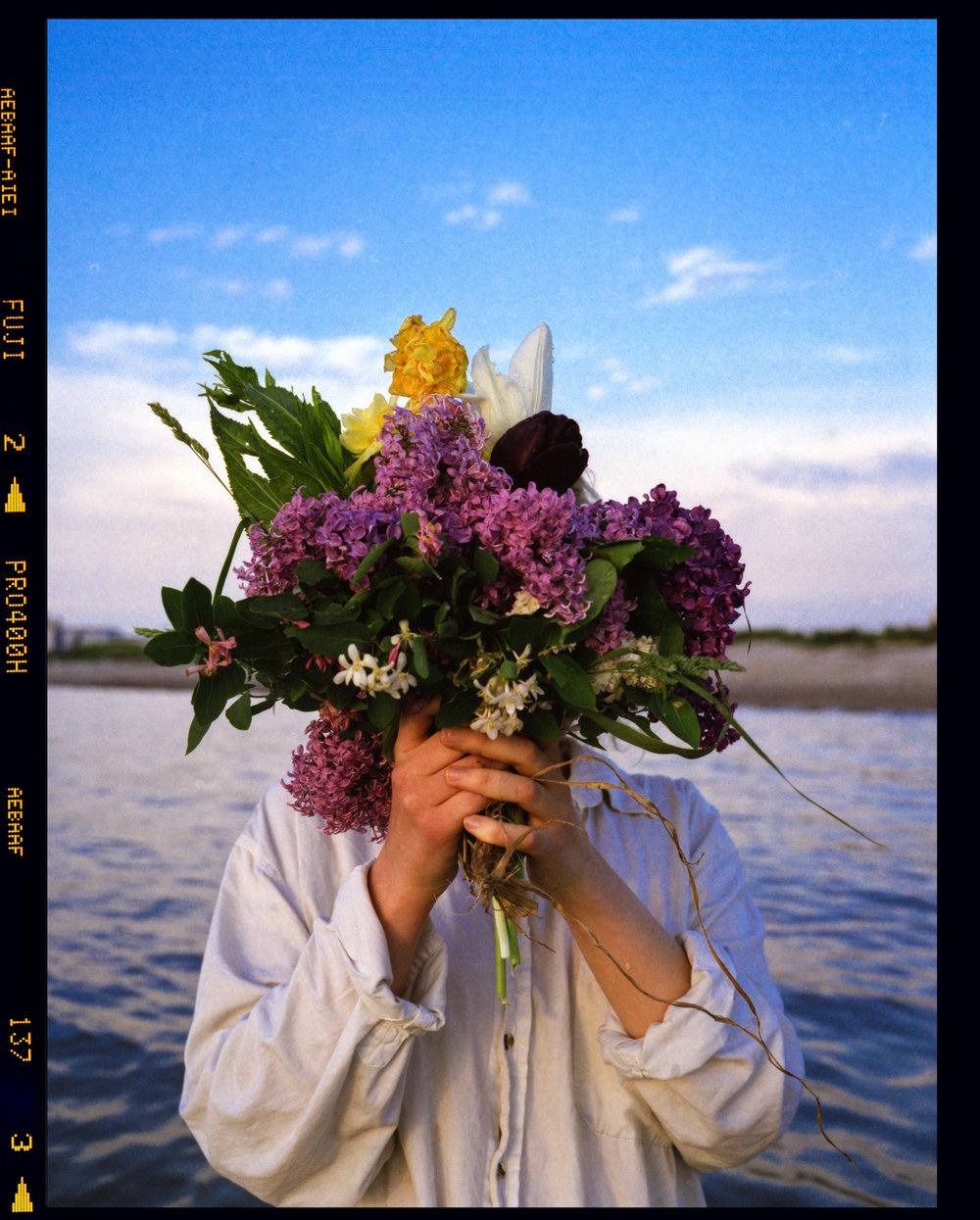 bloomfullframe.jpg